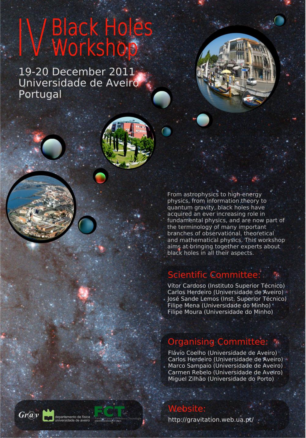 IV Black Holes Workshop's poster