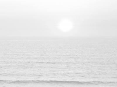 horizon grayscale